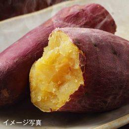おすすめ産地の焼き芋各種