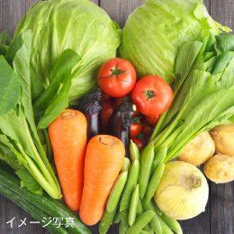 あまっ娘野菜各種